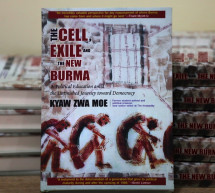 Q&A: In the New Burma, 'Democracy Alone is Not Enough'