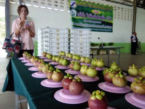 A woman takes a photograph of mangosteens on display at the the Khao Kichakood Cooperative. Picture: Mia Gomez